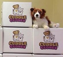 Baxter cuddle clone